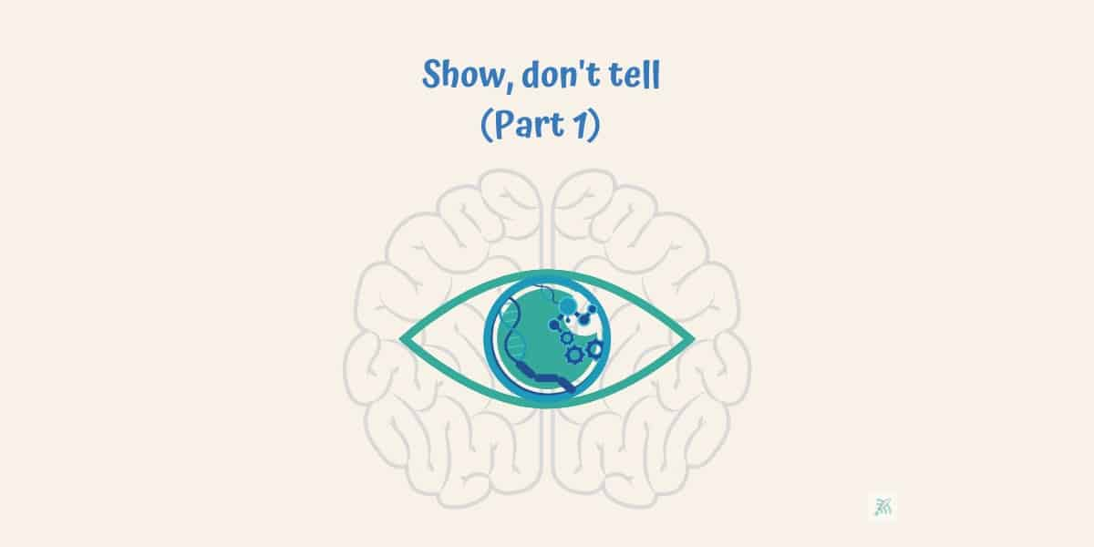 visual transmission of information to brain